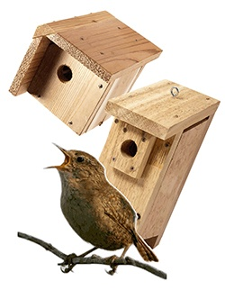 14 best birdhouses images on pinterest | bird houses, wren house