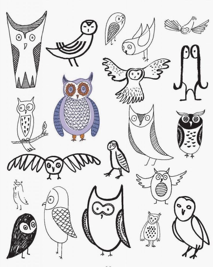 20 Ways to Draw an Owl to Get You in the Back-to-School Mood ...