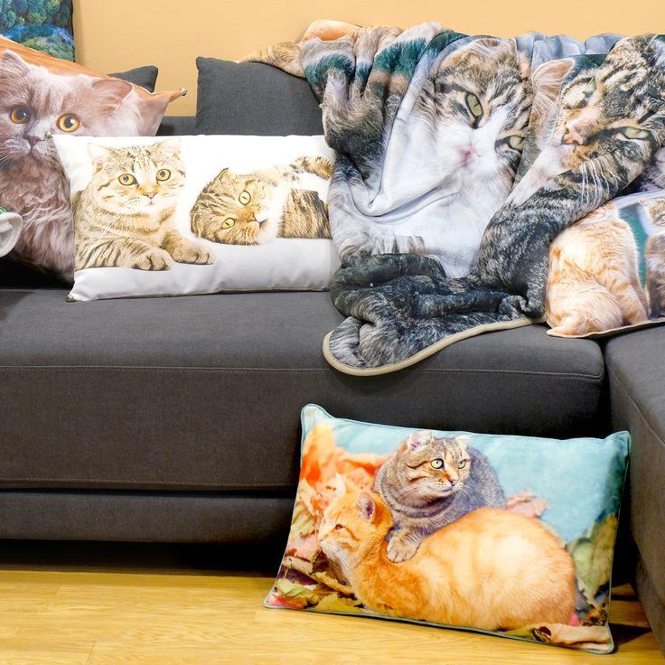 Nova Coleção Autumn Woods | A Loja do Gato Preto | #alojadogatopreto | #shoponline