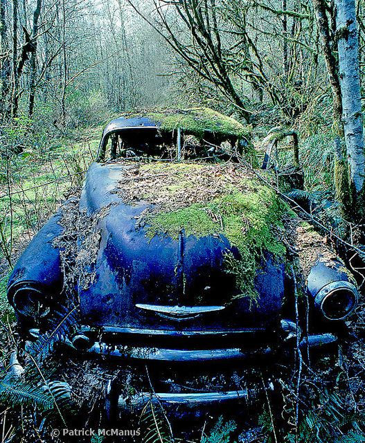 Abandoned Car for Sale - includes custom moss exterior finish (no extra charge)