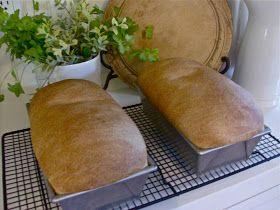 : Basic Whole Wheat Bread | food | Pinterest | Whole Wheat Bread ...