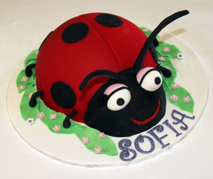 Lady Beetle Cake Like us on  www.facebook.com/melianndesigns