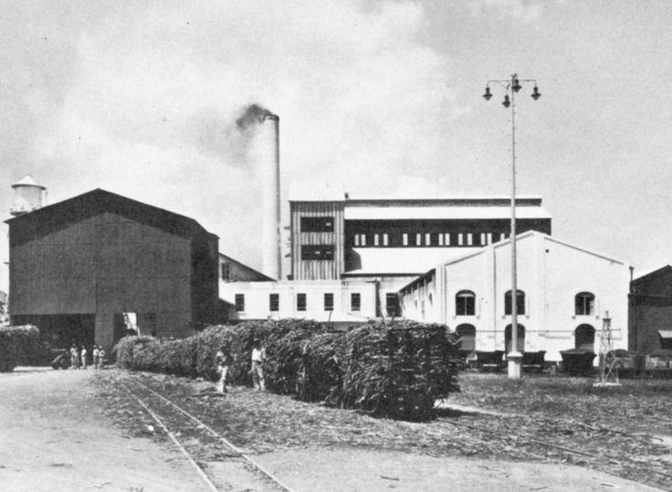Central San Vicente, Vega Baja, Puerto Rico. Operó entre los años 1873 y 1967. Capacidad: 5,600 toneladas por día. Propietarios: Leonardo Igaravidez (1873), Rubert Hnos. y New Central San Vicente, Inc.