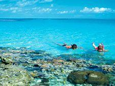 Gran Barrera de Coral, psicodelia submarina | oceania | Ocholeguas | elmundo.es