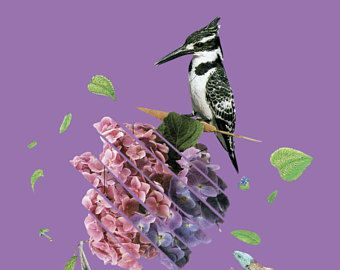Bird Collage Print, Purple Background Animal decoration, Home deco, wall deco, large printable poster, digital download