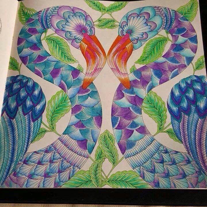 Birds Adult ColoringColoring BooksColor