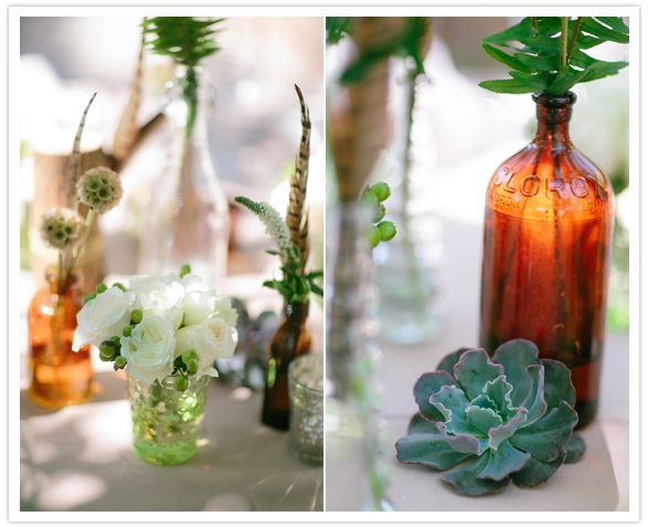 succulents and recycled bottles