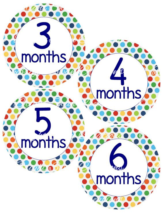 18 Month Stickers: Baby Month Stickers, 1-12 Months (Baby Monthly Milestone