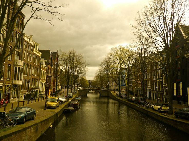 #europa #eurotrip #europe #amsterdam #travel #world #photography #holand #holanda #beautiful #love #park #green #arquitectura #river
