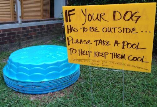 When Megan Brockman read that two dogs died from heat stroke, she started giving away kiddie pools outside her Virginia restaurant. This photo showing her generosity has gone viral.