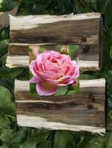 rags and roses - Yahoo Image Search Results