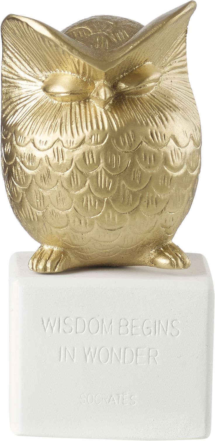 Owl Small Gold