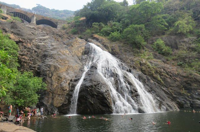 Full-Day Private Tour: Dudhsagar Water Falls and Spice Plantations from Goa Explore Dudhsagar Falls, a four-tiered waterfall located on the Mandovi River, with this 8-hour private tour from Goa. Dudhsagar Falls are among India's tallest waterfalls, with a height of 310 meters (1017 feet) and an average width of 30 meters (100 feet). Travel the falls via Forest Department Jeep and visit a spice plantation afterward.  Meet your guide at the lobby of your hotel i...
