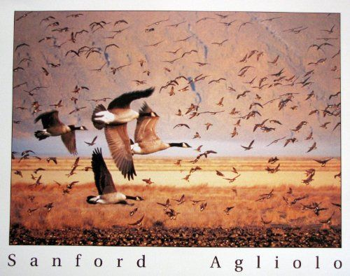 Bring home this ultimate Canada Geese birds flying art print poster which will surely add exclusivity to your home decor. This poster depicts the image of Canada geese bird flying is sure to add a charming ambience into your home. This poster can be a good gifting option as well. It is made of using Eco-solvent inks on high quality paper which ensures long lasting beauty of the product. Order today and enjoy your surroundings.
