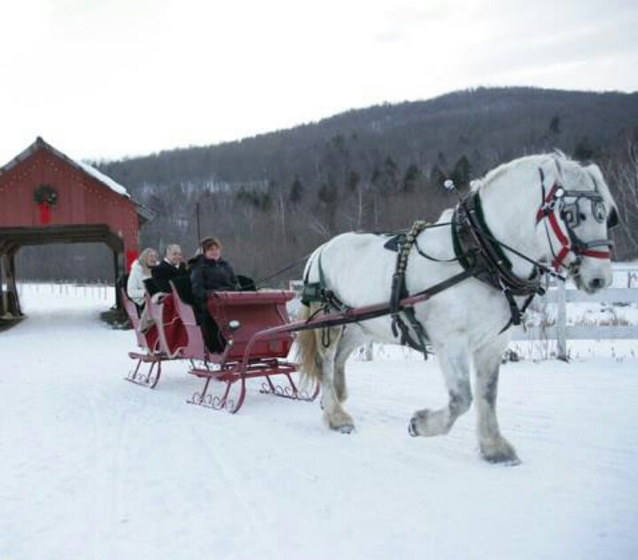 Image result for images of carriage rides in snow
