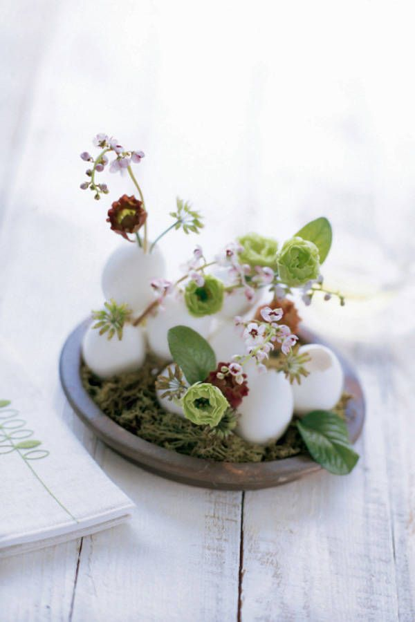nice idea - eggs as pots for small flowers