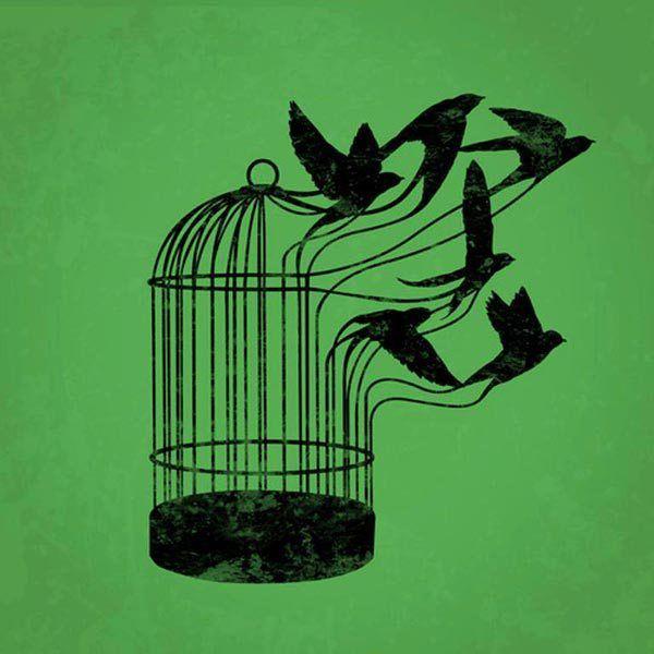 La libertad no viene sola – El blog de joseferjuan