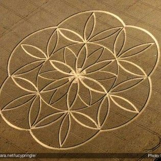flower-of-life-crop-circle-lucy-pringle