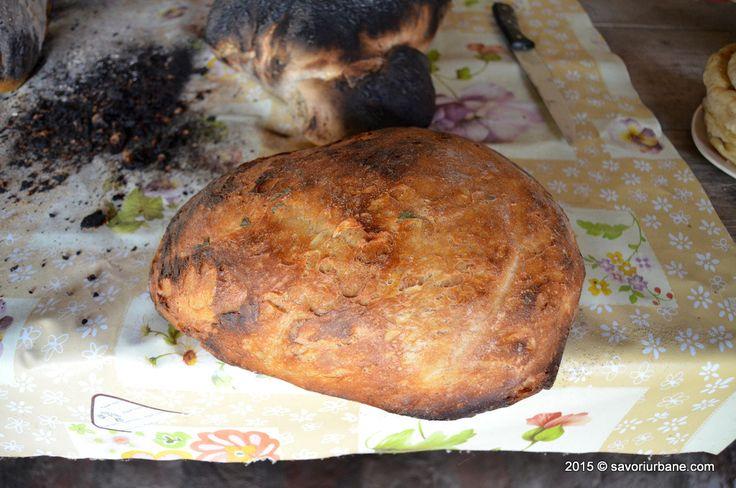 Paine de casa coapta in cuptor cu lemne la Crit Transylvania bread making (34)