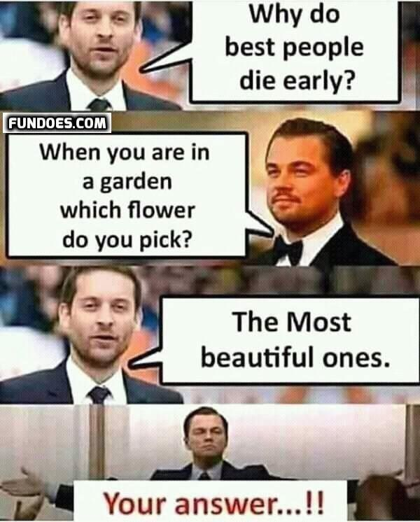 More Funny Memes In Www Fundoes Com To Make Laugh Jokes Quotes Good Life Quotes Reality Quotes