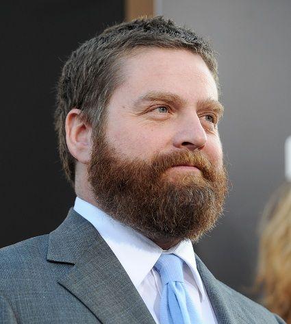 17 best Beard dye images on Pinterest | Beards, Beard style and Men ...