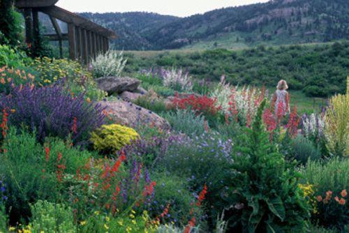 Water wise plantings in Utah