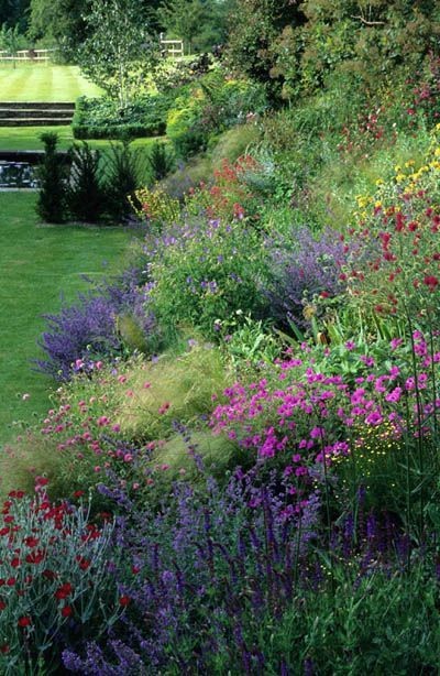 Home Farm. Hampshire. Design: Fiona Lawrenson. Perennial border on sloping site prairie planting.