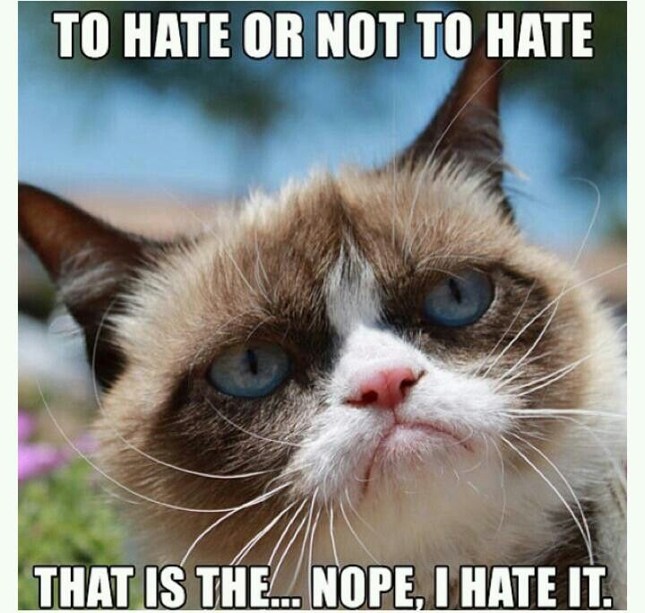 grumpy cat does not - photo #27