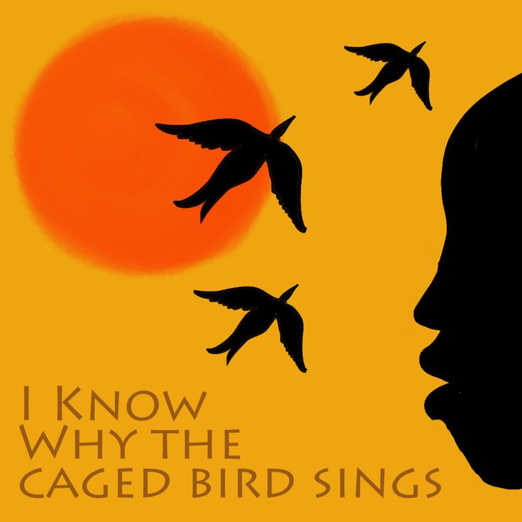 i know why the caged bird sings essay summary I know why the caged bird sings not just a rehashing of the summary good literary essay writers know that each paragraph must be clearly and strongly linked.