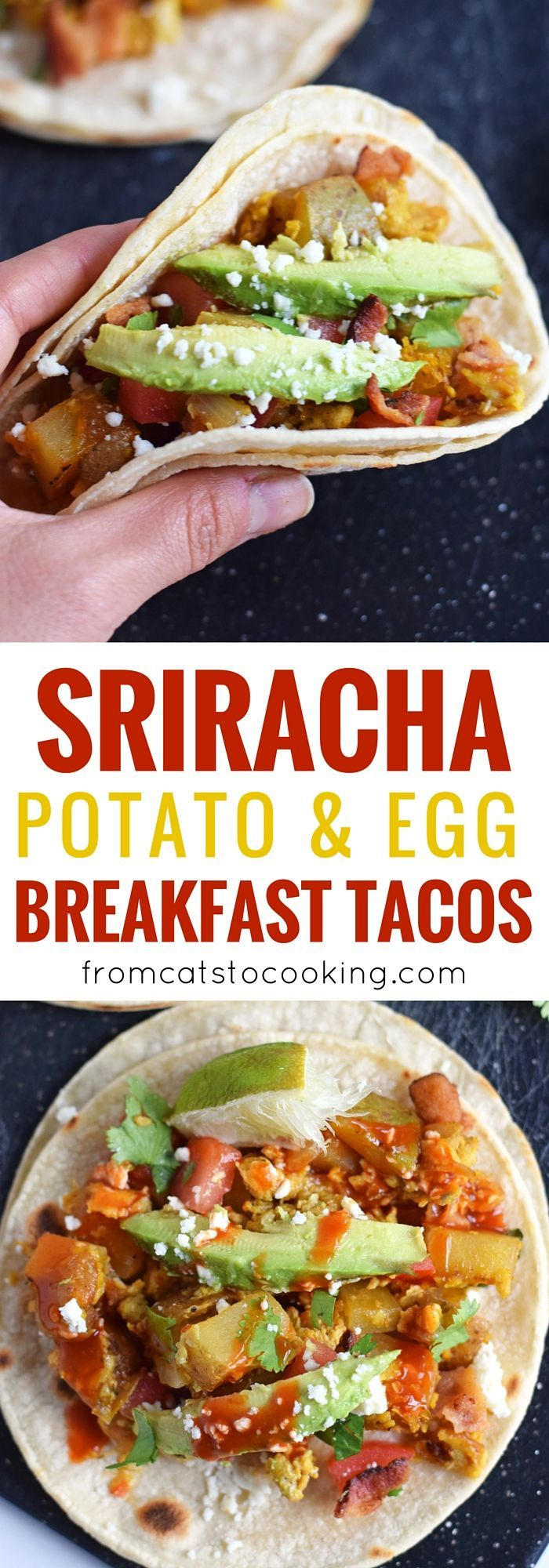 These Sriracha Potato & Egg Breakfast Tacos are the perfect brunch dish that everyone can enjoy. They're Mexican inspired with a little Thai flare. They're easily made vegetarian by omitting the bacon, are gluten free, paleo and pretty freakin' tasty! // fromcatstocooking...