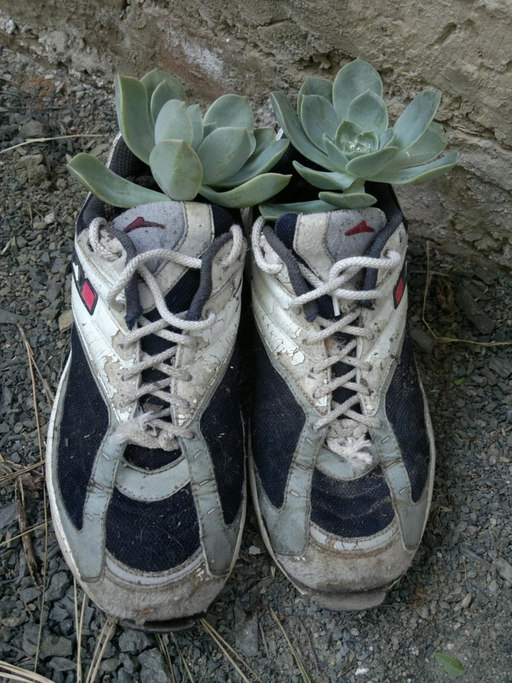 old running shoes turned planter :)