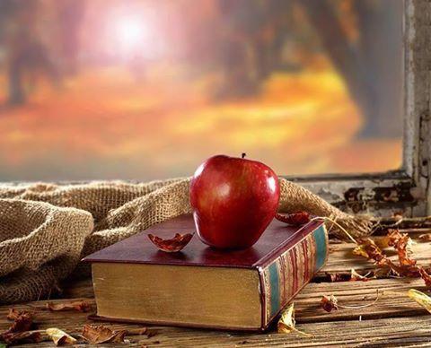 """""""Szeretem a könyvet,mert holt betűiben benne van minden,ami elmúlt és minden ami lesz.""""  Fekete István"""