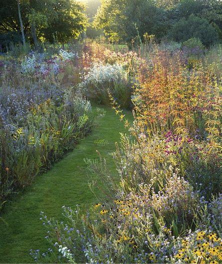 Great plains: my prairie garden