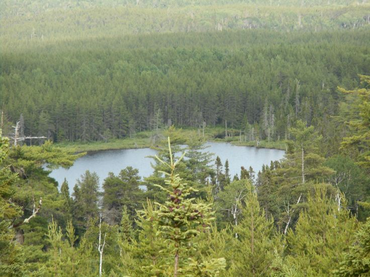 Frying Pan Lake, Northern NB zoomed in