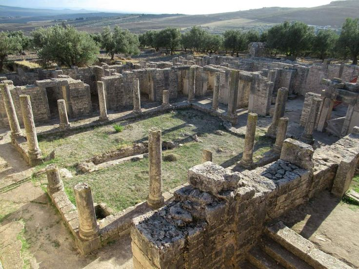 The 3rd century AD Trifolium Villa is the largest house yet uncovered at Dougga, Tunisia. The small rooms surrounding the central dining room and downhill location have led to suggestions that it was a brothel.