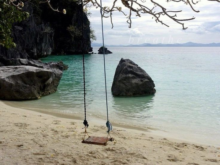 Pin by Kelley Piz on Go Away! Palawan, Ecology, Places