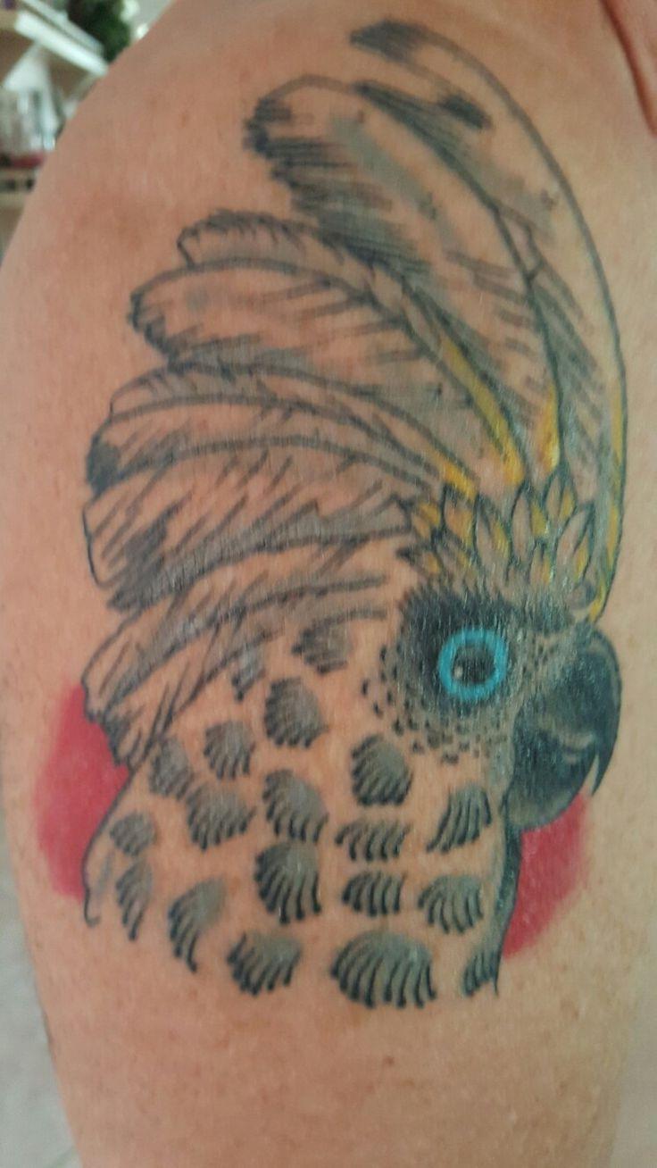 First tattoo: My Umbrella Cockatoo