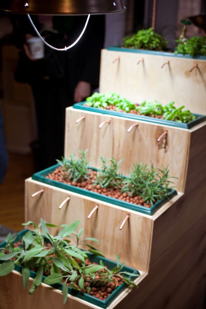 A beautiful hydroponic farm in the shape of a staircase for your plants to grow in your home with minimal effort. / by David Phillips, Michael Cohen and Michelle Temple
