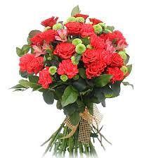 Výsledok vyhľadávania obrázkov pre dopyt www.kvety k meninám