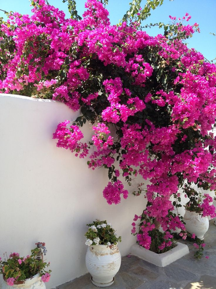 Walking around at Seaside Cottage by Belvedere at Psarou Beach, Mykonos