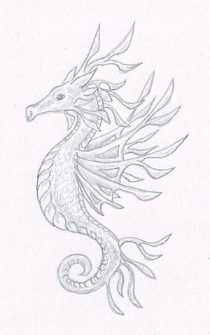 simple seahorse drawing | Go Back > Gallery For > Simple Seahorse Sketch