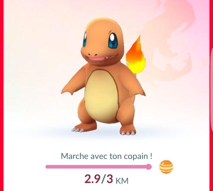 Pokémon Go mis à jour : possible davoir un Pokémon compagnon et support du Pokémon Go Plus