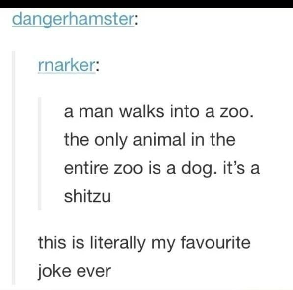 Wow. For those of u who didn't get it , shitzu is a dog type, also the zoo was shit , hence shit-zoo