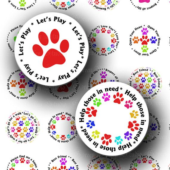 for Pet Care badge