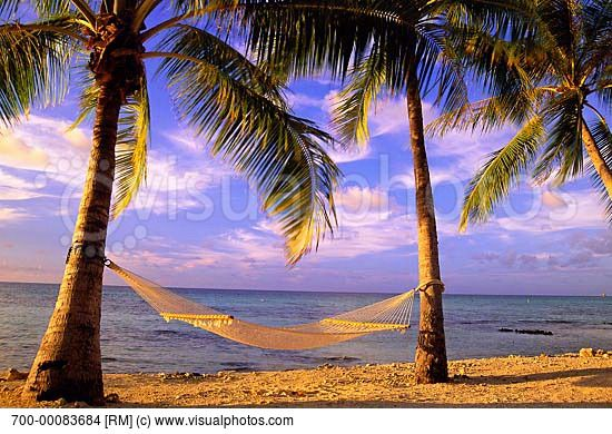 12 Best Images About Tropical Islands On Pinterest