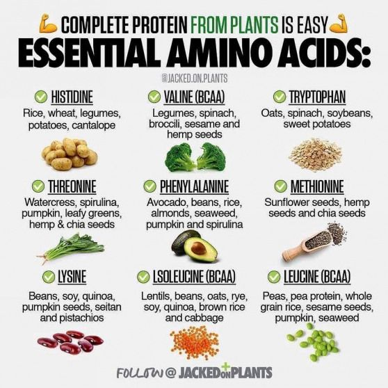 Daily Nutrition Facts On Instagram Can You Get All Of Your Essential Amino Acids From Plants Read Amino Acids Food Vegan Nutrition Nutrition Facts