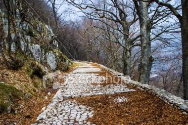 Mountain Path - Montevergine