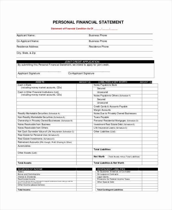 Personal Financial Statements Template In 2020 Personal