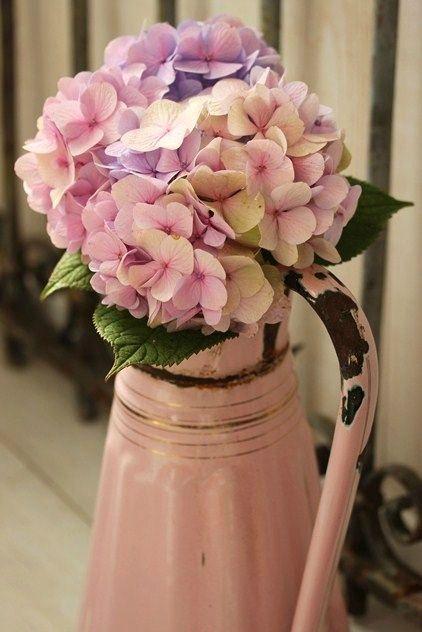 Bouquet d'hortensia en vieux rose. Magnifique et romantique à souhait
