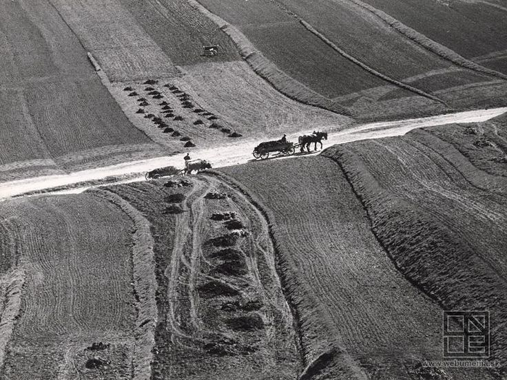 Martin Martinček: Poľná cesta:1955 - 1975